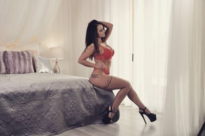 Available Now Escort in Lakewood New Jersey